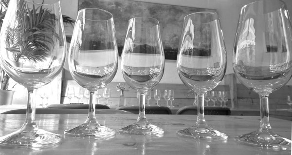 Four-Week Wine Course at Bantry's Organico